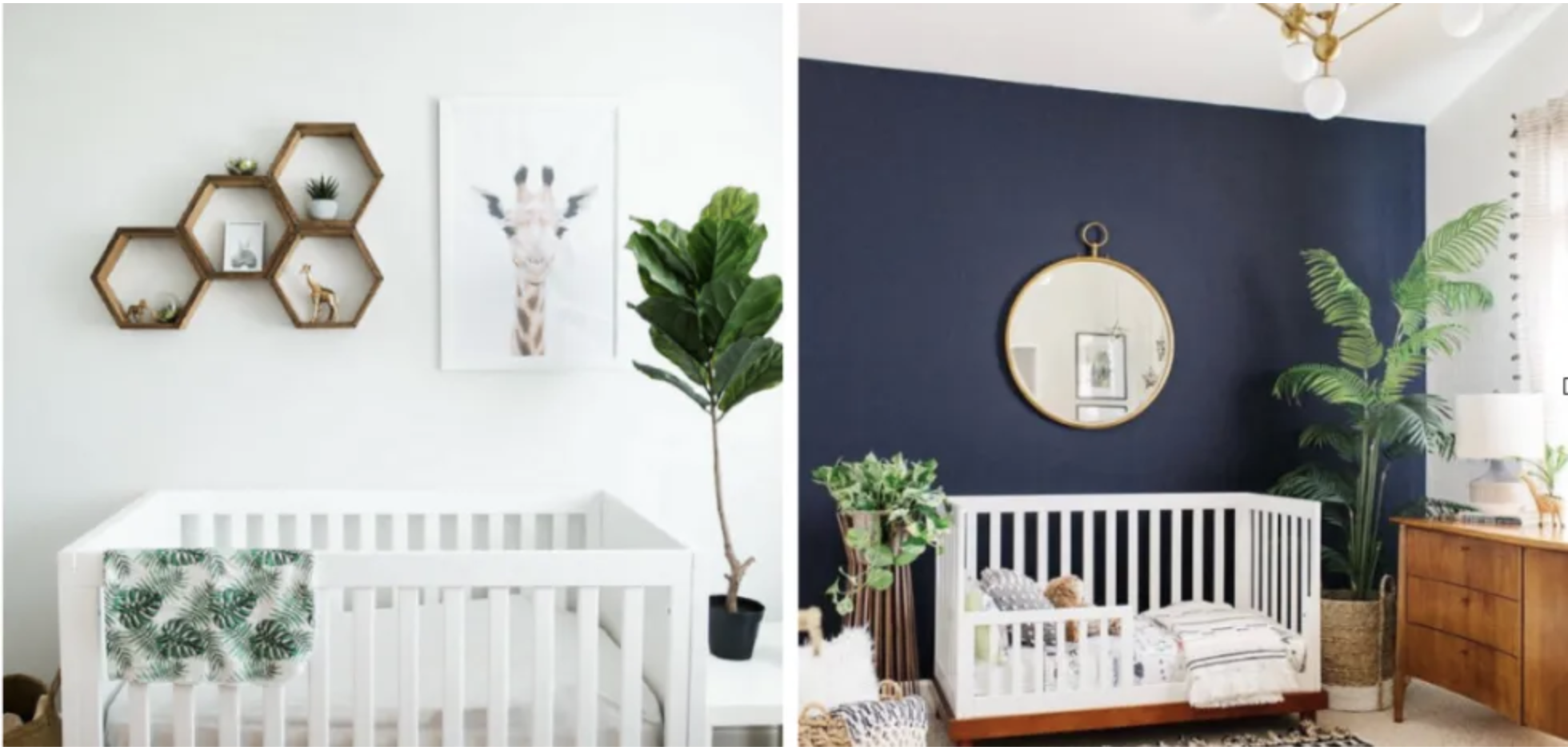 Children's rooms soften with plants